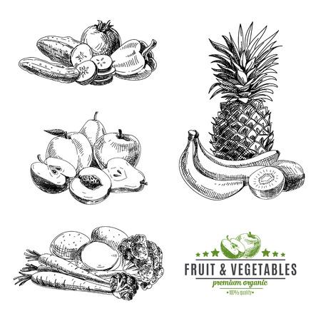 dibujos lineales: Vector conjunto de frutas y verduras. Comida saludable. Ilustración del vector en estilo de dibujo. Dibujado a mano elementos de diseño.
