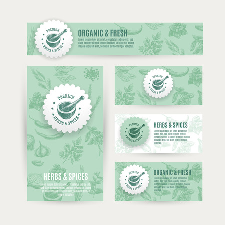 Vector banners set  with hand drawn herbs and spices. Organic and fresh spices illustration.