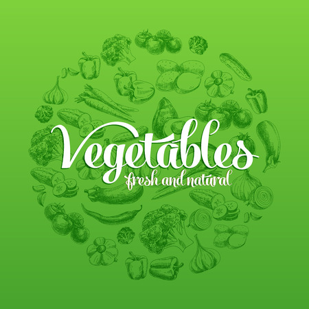 Hand drawn vector illustration with vegetables. Sketch.