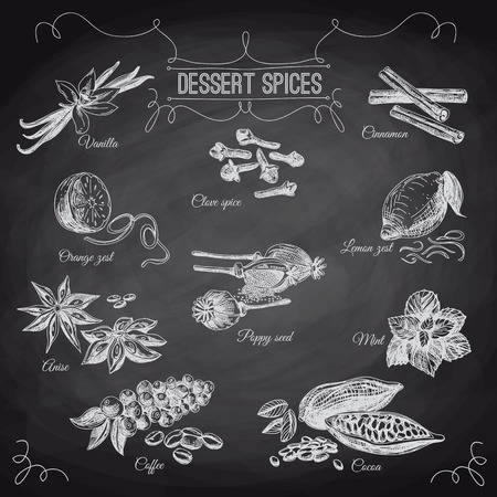 Vector hand drawn set with Dessert Spices. Vintage illustration. Retro collection with Vanilla, poppy, orange zest, lemon peel, cocoa, clove spice, anise and mint leafs. Chalkboard.