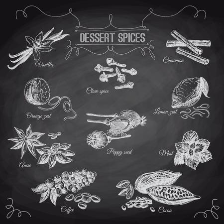 Vector hand getrokken set met Dessert Spices. Vintage illustratie. Retro collectie met vanille, papaver, sinaasappelschil, citroenschil, cacao, kruidnagel specerijen, anijs en munt bladeren. Schoolbord.