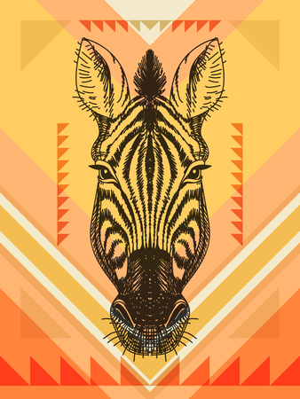 hand on the head: Vector illustration with zebra head. Hand drawn sketch.