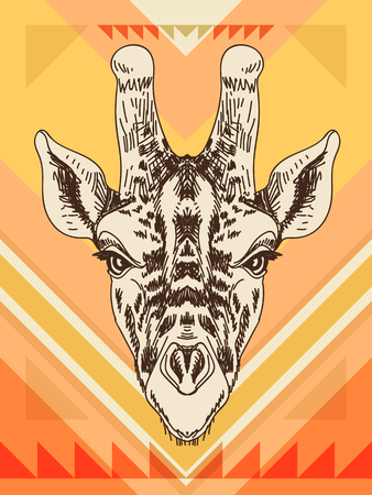 wild life: Vector hand drawn illustration with giraffe head. Wild Animal. Wild life. Illustration