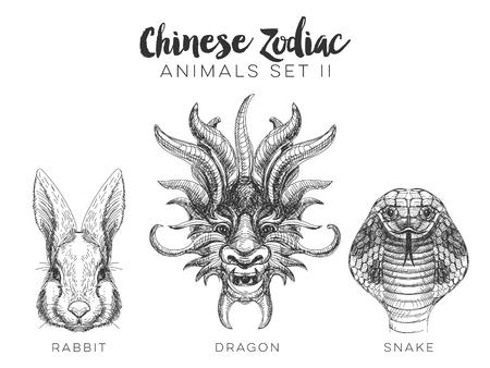conejo: Vector conjunto de dibujado a mano animal del zodiaco chino. Ilustración de la vendimia con el conejo dragón y la serpiente.