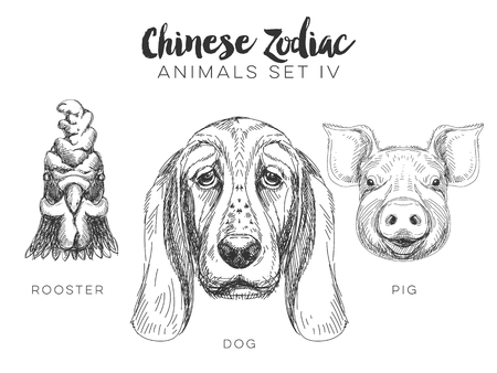 rooster: Vector set of hand drawn chinese zodiac animal. Vintage illustration with dog, pig and rooster.