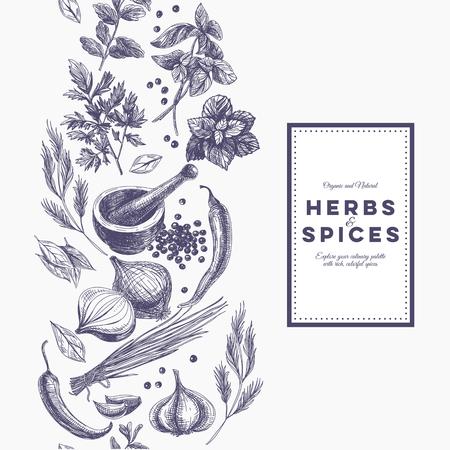 dibujo: Vector de fondo con hierbas y especias dibujado a mano. Orgánica y especias frescas ilustración.