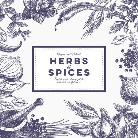 Vecteur de fond avec des herbes et des épices dessinés à la main. Illustration organique et épices fraîches.