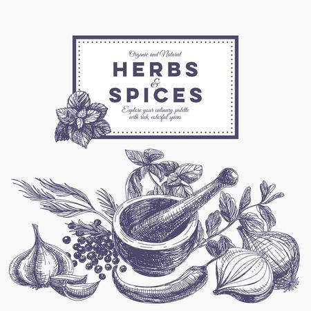 epices: Vecteur de fond avec des herbes et des épices dessinés à la main. Illustration organique et épices fraîches.
