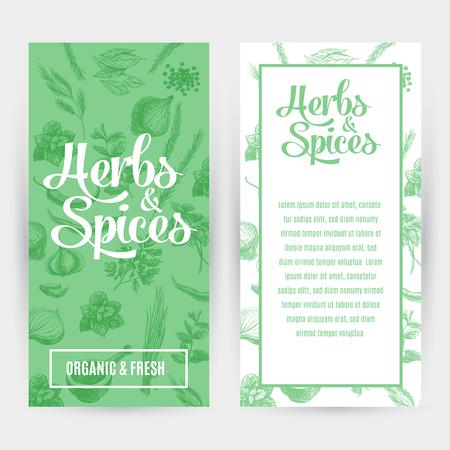 epices: bannières Vector set avec des herbes et des épices dessinés à la main. illustration organique et épices fraîches. Illustration
