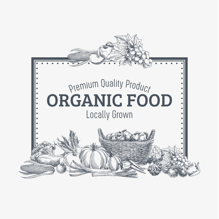 Vector background with hand drawn organic food. Vegetable and fruits spices illustration.
