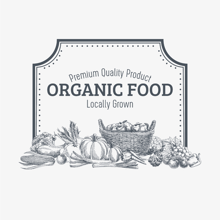 and organic: Vector background with hand drawn organic food. Vegetable and fruits spices illustration.