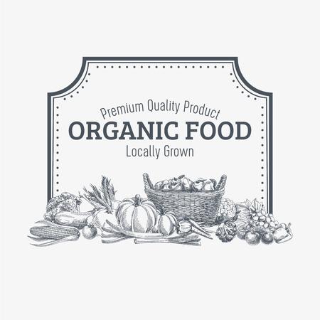 logo de comida: Vector de fondo con dibujado a mano alimentos orgánicos. Vegetales y frutas especias ilustración.