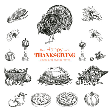 cornucopia: Vector hand drawn Thanksgiving set. Retro illustration. Sketch