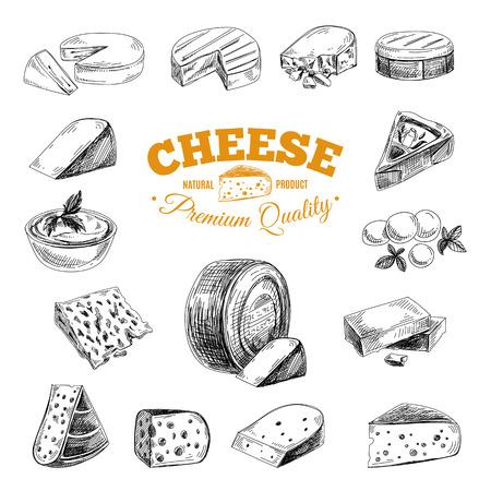 ilustracion: vector dibujado a mano ilustración con quesos. Bosquejo.
