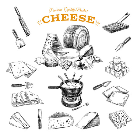 appetizers: Vector hand drawn illustration with cheeses . Sketch.