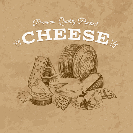 appetizers: Vector cheese background.Milk products. Dairy vintage illustration Illustration