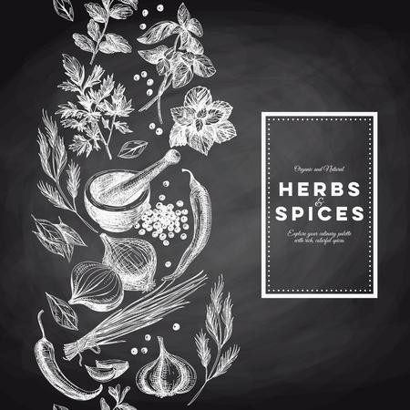 手でベクトルの背景には、ハーブやスパイスが描画されます。有機と新鮮なスパイスの図。黒板。Border.Repeating の背景。
