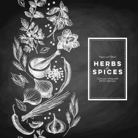 Vector background with hand drawn herbs and spices. Organic and fresh spices illustration. Chalkboard. Border.Repeating background. Vettoriali