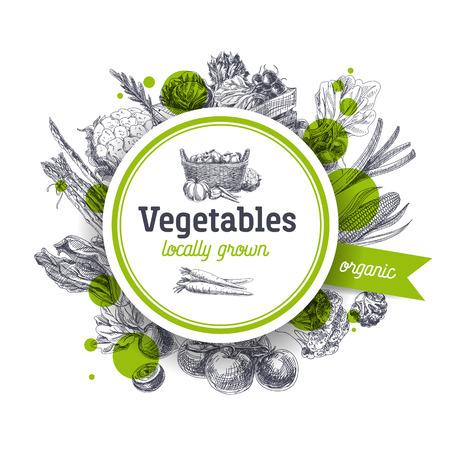 Vector hand Illustration tirée du marché agricole. Style vintage. fond de la nourriture organique Retro. Cultivés localement croquis Banque d'images - 66667884