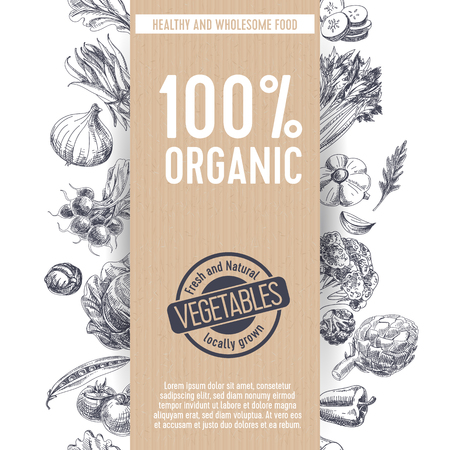 ensalada de verduras: vector dibujado a mano Ilustración mercado agrícola. Estilo vintage. Fondo de la comida orgánica retro. Localmente crecido boceto Vectores