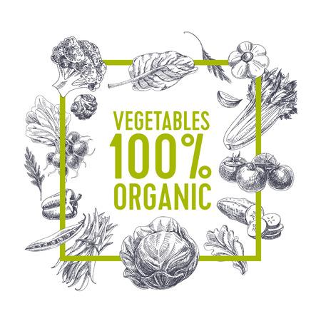 ロゴベクトルの手には、農産市場の図が描画されます。ビンテージ スタイルです。レトロな有機食品の背景。地元産のスケッチ
