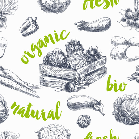 Vector vegetables retro seamless pattern. Vintage Illustration. Organic food sketch
