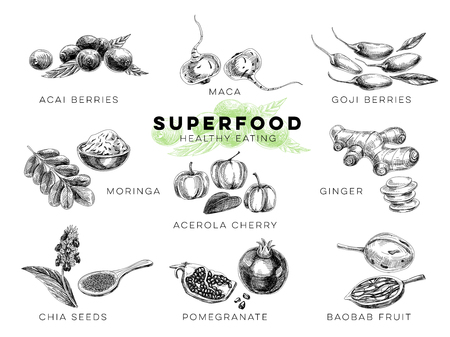 Vector hand drawn superfood Illustrations set with acai and goji berries, maca, moringa, ginger, chia seeds, pomegranate, baobab fruit. Sketch vintage style. Design template. Ilustracja