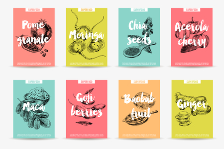 maca: Vector hand drawn superfood cards set. Sketch vintage style. Poster collection. Design template. Illustration
