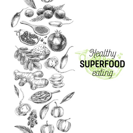 Vector hand drawn superfood Illustration. Sketch vintage style. Design template. Repeating boarder background.