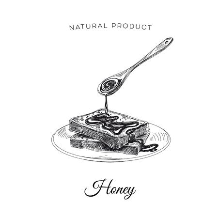 Vector hand drawn honey Illustration. Sketch vintage style. Design template. Retro background.