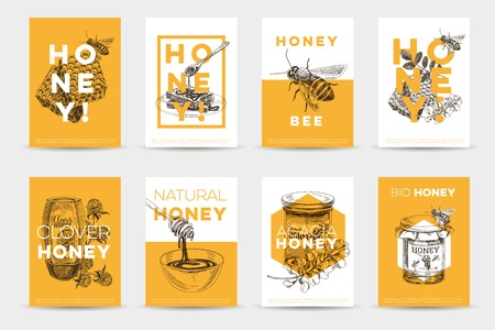 Vector hand drawn honey poster set. Sketch vintage style Illustrations. Cards design template. Retro background.