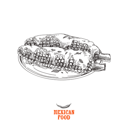 Vintage vector hand drawn Mexican food sketch Illustration. Retro style. Illustration