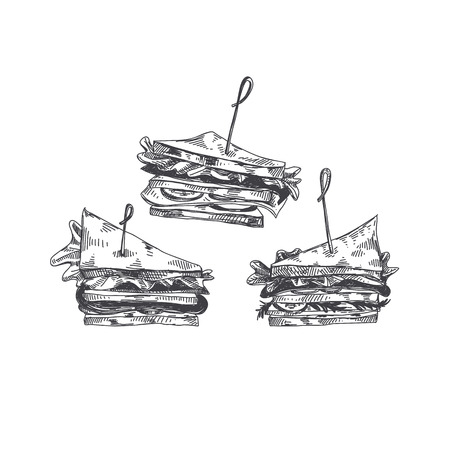Beautiful vector hand drawn finger food Illustration. Sandwich in Detailed vintage style images.