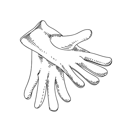 Beautiful vector hand drawn vintage gloves Illustration. Detailed retro style images. Sketch element for labels and cards design.