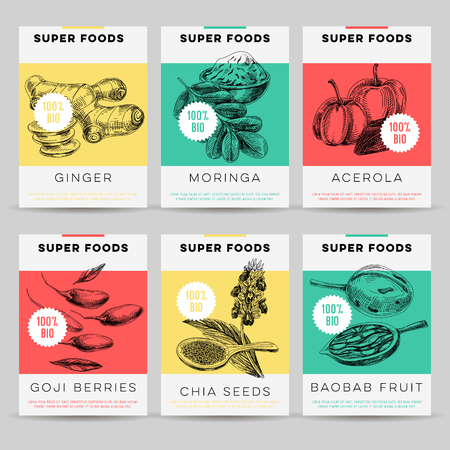 Beautiful vector hand drawn super foods card set. Detailed trendy style images. Modern sketch elements collection for packaging design. Vettoriali