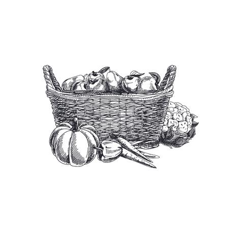 Illustration de légumes dessinés à la main beau vecteur. Panier de style rétro détaillé avec image de fruits et légumes. Élément de croquis vintage pour la conception d'étiquettes, d'emballages et de cartes.