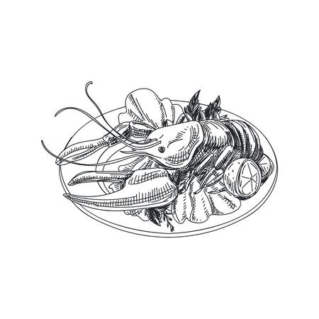美しいベクターハンド描き魚介イラスト。ロブスターをイメージした詳細なレトロスタイルの料理。  イラスト・ベクター素材
