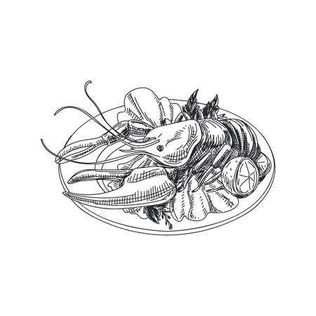 Beautiful vector hand drawn seafood Illustration. Detailed retro style dish with a lobster image. Ilustração