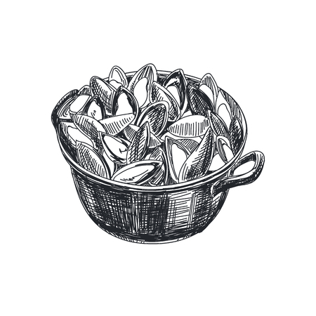 Beautiful vector hand drawn seafood Illustration. Detailed retro style a saucepan with mussels image.