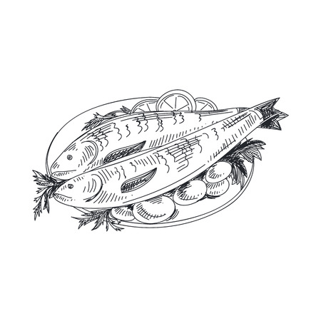 Beautiful vector hand drawn seafood Illustration. Detailed retro style grilled fish with potatoes image. Vintage sketch element for labels, packaging and cards design. Illustration