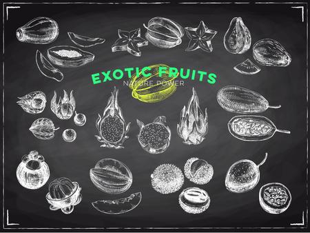 Prachtige vector hand getrokken exotische vruchten schoolbord illustraties instellen. Gedetailleerde afbeeldingen in retrostijl. Vintage schetsen voor labels. Elementencollectie voor ontwerp.