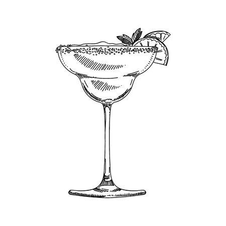Beautiful vector hand drawn coctail Illustration. Detailed retro style image. Vintage sketch element for labels, packaging and cards design. Modern background. Vectores