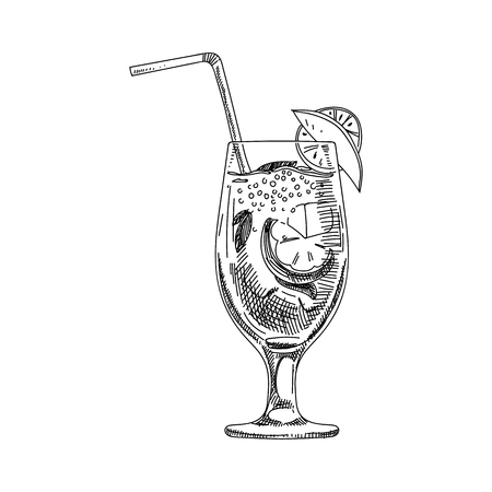 Beautiful vector hand drawn coctail Illustration. Detailed retro style image. Vintage sketch element for labels, packaging and cards design. Modern background. Ilustração