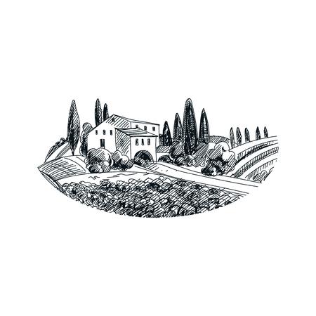 Illustrazione disegnata a mano del vigneto di vettore bello. Immagine dettagliata in stile retrò. Elemento di schizzo vintage per la progettazione di etichette, imballaggi e carte. Sfondo moderno.