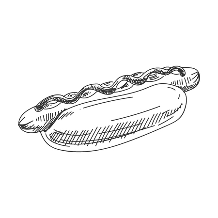 Beautiful vector hand drawn hotdog Illustration. Detailed retro style image. Vintage sketch element for labels, packaging and cards design. Modern background.