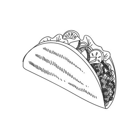 Ilustración de taco dibujado a mano hermoso vector. Imagen detallada de estilo retro. Elemento de dibujo vintage para diseño de etiquetas, envases y tarjetas. Fondo moderno.
