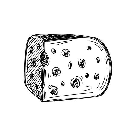 Beautiful vector hand drawn Cheese Illustration.