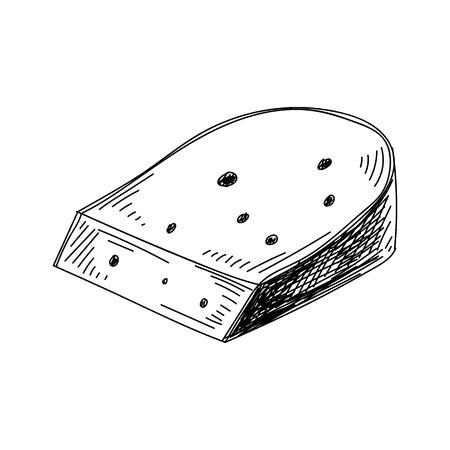Beautiful vector hand drawn Cheese Illustration.