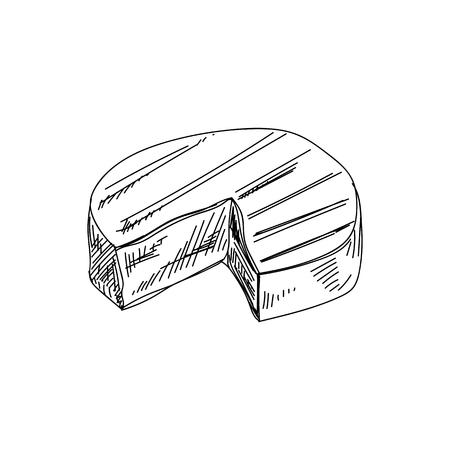 Schöne Vektor handgezeichnete Käse Illustration. Detailliertes Bild im Retro-Stil.