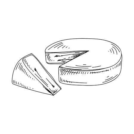 Illustration de fromage dessinés à la main beau vecteur. Image de style rétro détaillée.